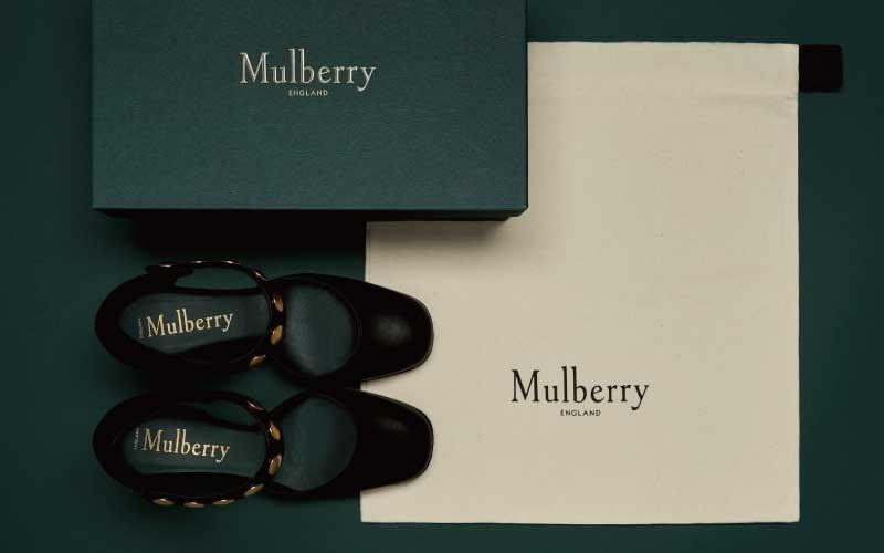 マルベリー(MULBERRY)とは 画像