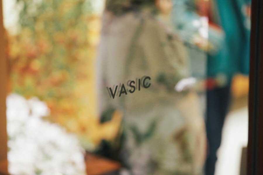 AVSICとは 画像
